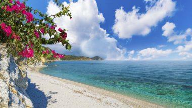 Spiaggia di Pedulella Isola Elba
